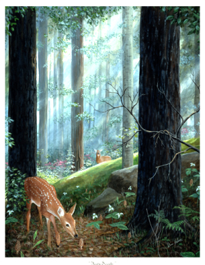 A Fawn Scents