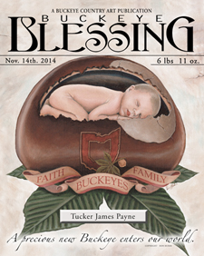 Buckeye Blessing 225 wide blog