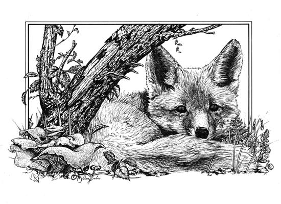 Rusty fox 550