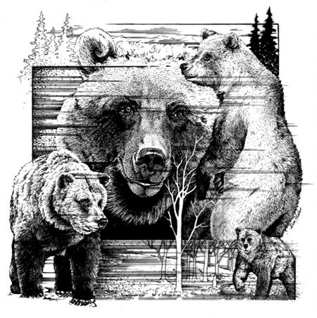 Bear It facebook profile